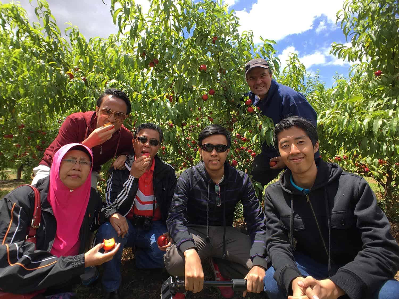 Fruit Picking with Xplorevic - Travel Designer